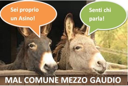 mal_comune_mezzo_gaudio_immagine