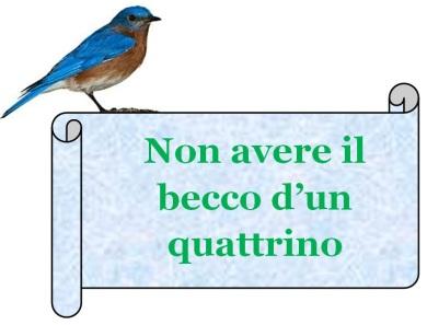 becco_quattrino