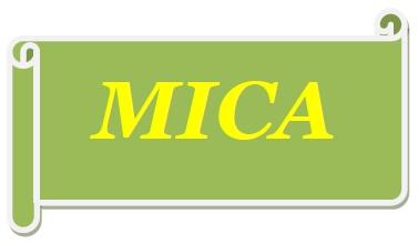 mica_immagine